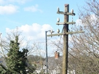Greenway -  Industrial Heritage