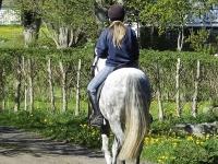 Horse Riders Enjoying the Greenway