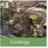 Geology Button